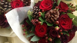 A Bouquet Of Cones Wallpaper Download