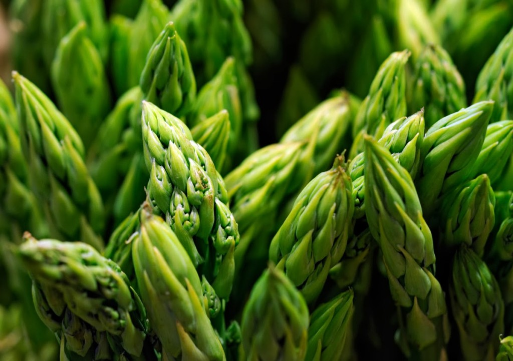 Asparagus wallpapers HD