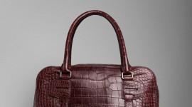 Bag Of Crocodile Wallpaper For IPhone