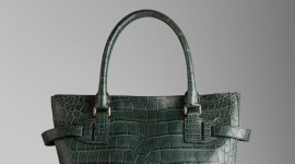 Bag Of Crocodile Wallpaper For IPhone Free