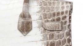Bag Of Crocodile Wallpaper Gallery