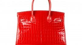 Bag Of Crocodile Wallpaper High Definition
