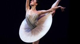 Ballerina Wallpaper HQ