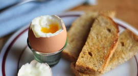 Boiled Eggs Wallpaper Gallery