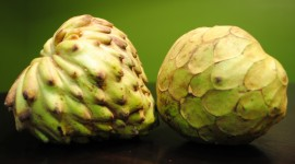 Cherimoya Wallpaper Background