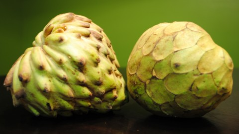 Cherimoya wallpapers high quality