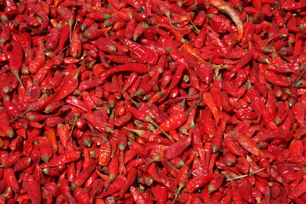 Chilli wallpapers HD