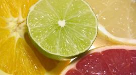 Citrus High Quality Wallpaper