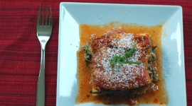 Dash Zucchini Lasagna Photo Download