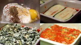 Dash Zucchini Lasagna Pics