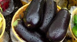 Eggplant Wallpaper 1080p
