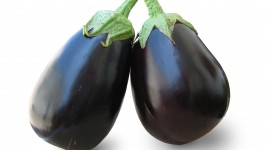 Eggplant Wallpaper Download Free
