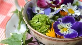 Flower Tea Wallpaper Download