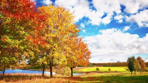 Golden Autumn wallpapers high quality