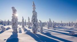Lapland Wallpaper Background