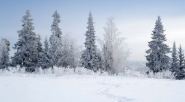Lapland Wallpaper HD