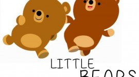 Little Bears Aircraft PictureLittle Bears Aircraft Picture