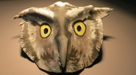 Mask Of An Owl Wallpaper Download Free