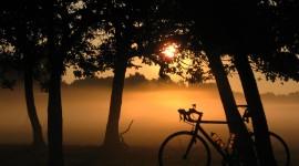 Misty Morning Desktop Wallpaper For PC