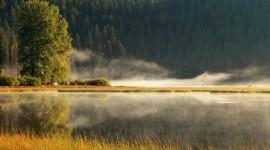 Misty Morning Photo Free