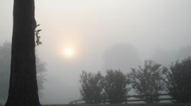 Misty Morning Photo Free#2