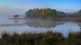 Misty Morning Wallpaper 1080p