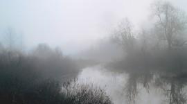 Misty Morning Wallpaper For PC