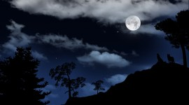 Moon In The Clouds Photo Free#1