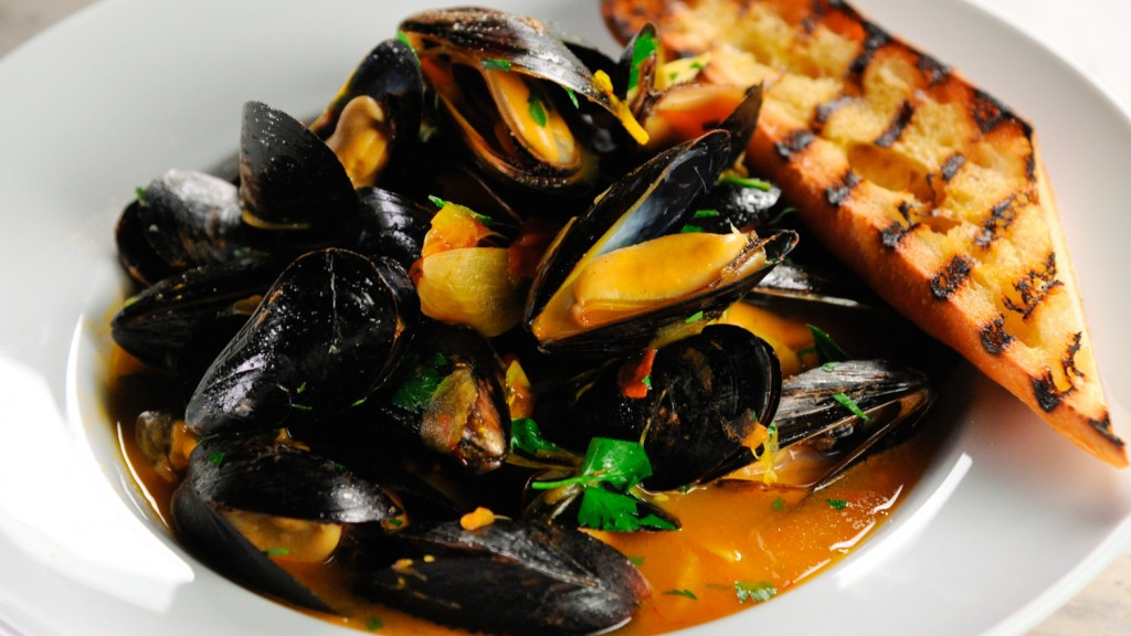 Mussels wallpapers HD