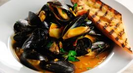 Mussels Best Wallpaper