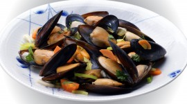 Mussels Desktop Wallpaper