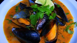 Mussels Photo Download#1