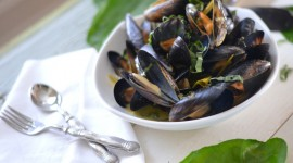Mussels Photo Free#1
