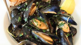 Mussels Photo#2