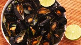 Mussels Wallpaper Download