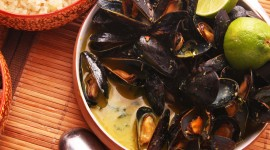 Mussels Wallpaper Download Free