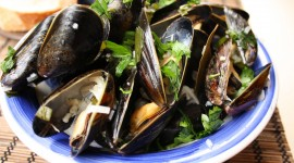 Mussels Wallpaper For PC