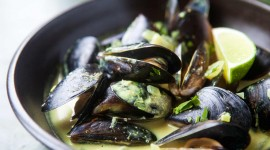 Mussels Wallpaper Full HD