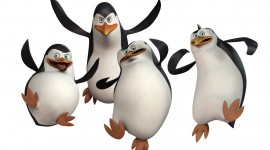 Penguins Madagascar Image