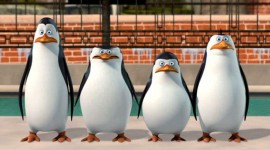 Penguins Madagascar Image Download