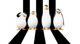 Penguins Madagascar Wallpaper 1080p