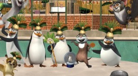 Penguins Madagascar Wallpaper Full HD