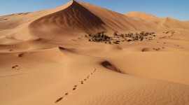 Pictures Of Sand Photo Download