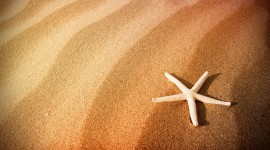 Pictures Of Sand Wallpaper For PC