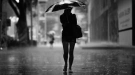 Rainy Weather Desktop Wallpaper HD