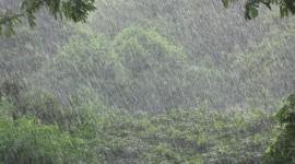 Rainy Weather Wallpaper Full HD