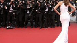 Red Carpet Wallpaper Download