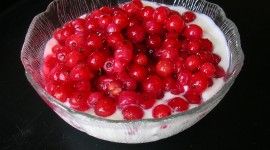 Red Currant Photo Free