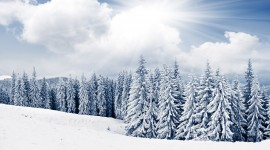 Snowy Winter Desktop Wallpaper For PC