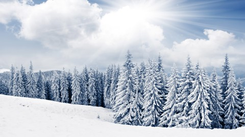 Snowy Winter wallpapers high quality